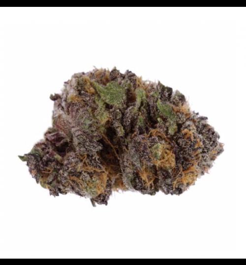Purple Kush 1g